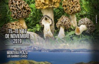 Jornadas micológicas en Los Barrios del 15 al 17 de noviembre