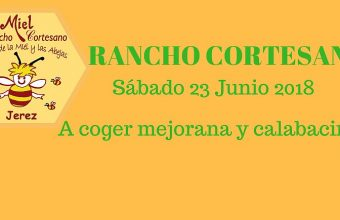 23 y 24 de junio. Jerez. Recolección de calabacines y degustación de limonadas y pisto en Rancho Cortesano