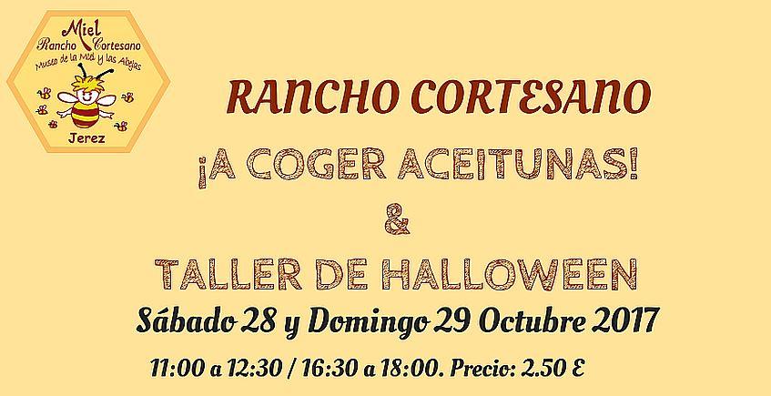 28 y 29 de octubre. Jerez. Taller de aceitunas y calabazas en Rancho Cortesano
