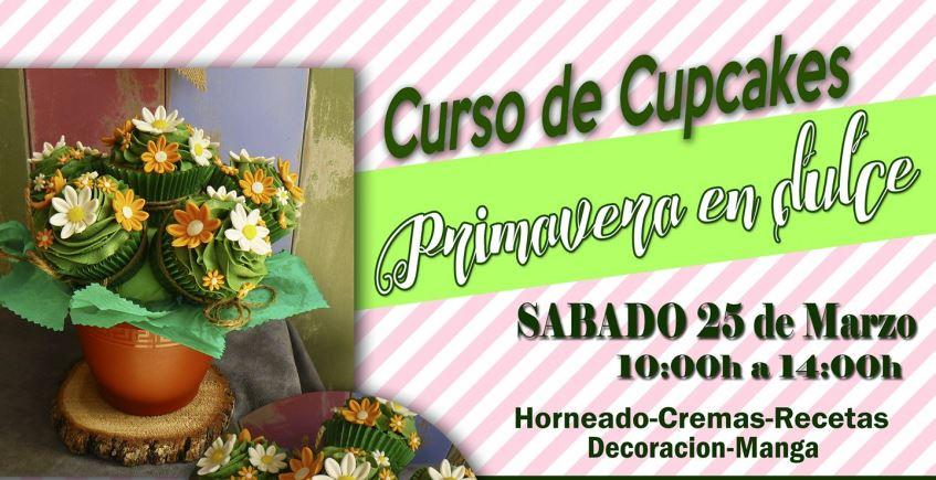 25 de marzo. Puerto Real. Curso de cupcakes