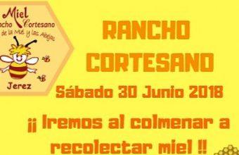 30 de junio. Jerez. Recolección de miel en Rancho Cortesano