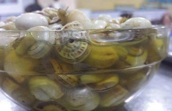 Los caracoles del bodegón Andalucía
