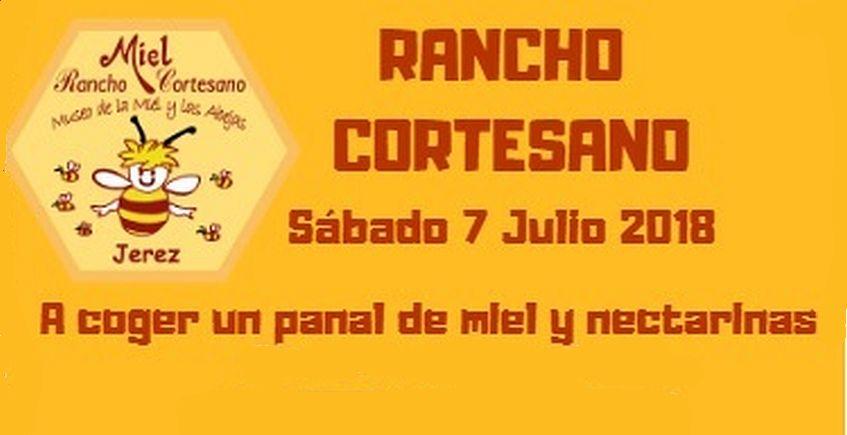 7 de julio. Jerez. Recolección de miel y nectarinas en Rancho Cortesano