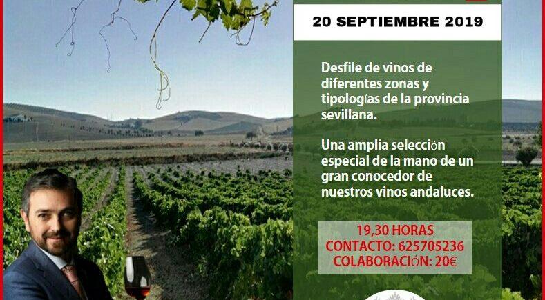 Cata de vinos de la provincia de Sevilla el 20 de septiembre en el Wine Room Club de San Fernando