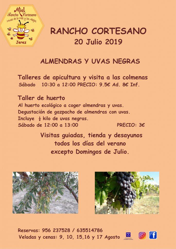 ALMENDRAS Y UVAS -_001