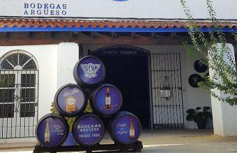Del 1 al 31 de julio. Sanlúcar. 'La manzanilla es cultura' en Bodegas Argüeso