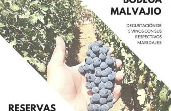 21 de marzo. Cádiz. Cata de Bodegas Malvajio en Recreo Chico