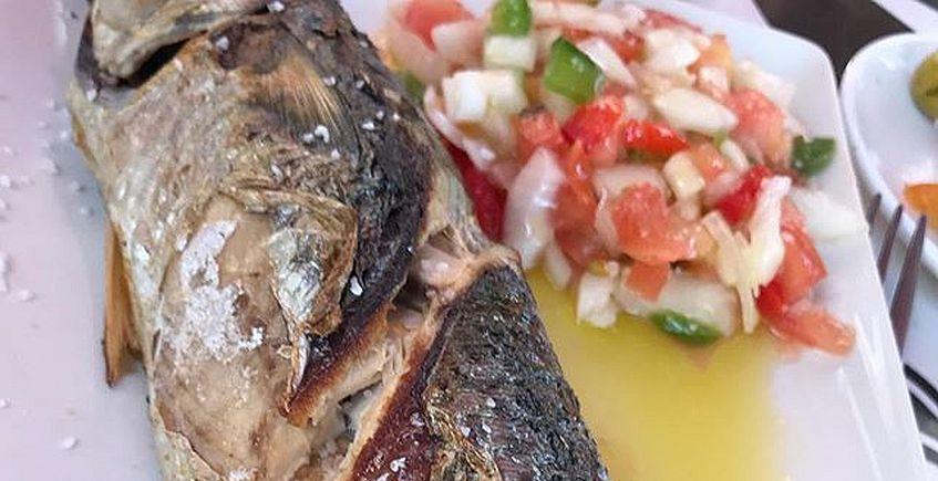 Chiclana celebra su Semana de la Caballa del 21 al 30 de junio