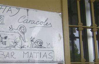 Los caracoles del Bar Matías