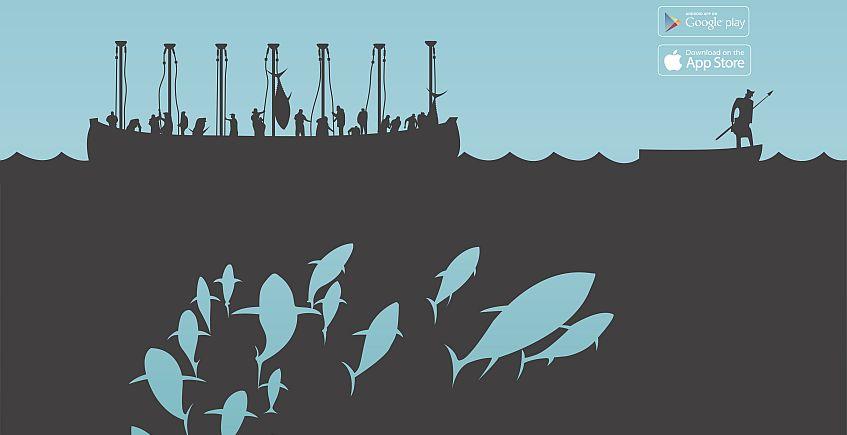 14 al 19 de mayo. Zahara de los Atunes. Ruta del atún