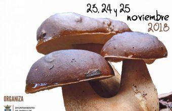 Del 23 al 25 de noviembre. Jimena. Jornadas micológicas