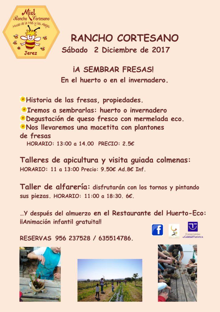 fresas-2-12-17-copia_001