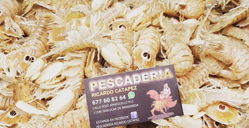 Los frutos del mar de la pescadería Ricardo Catapez