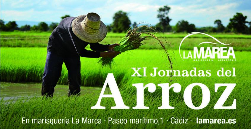 Cádiz. Jornadas del arroz en la cervecería La Marea