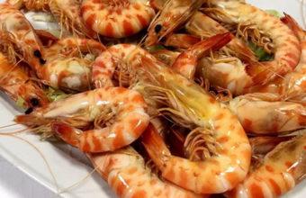 Los langostinos cocidos de Casa Manolito