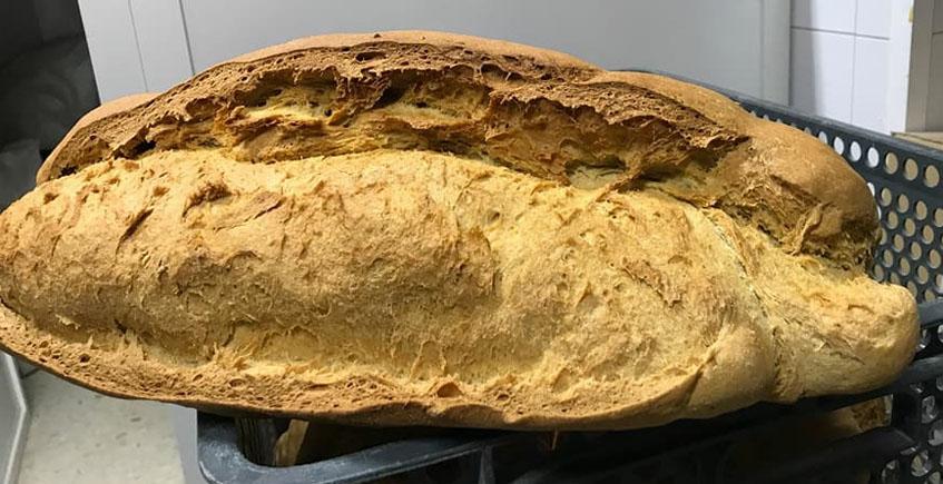 Panadería El Perchitero
