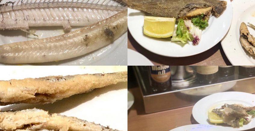Los pescados de Garum
