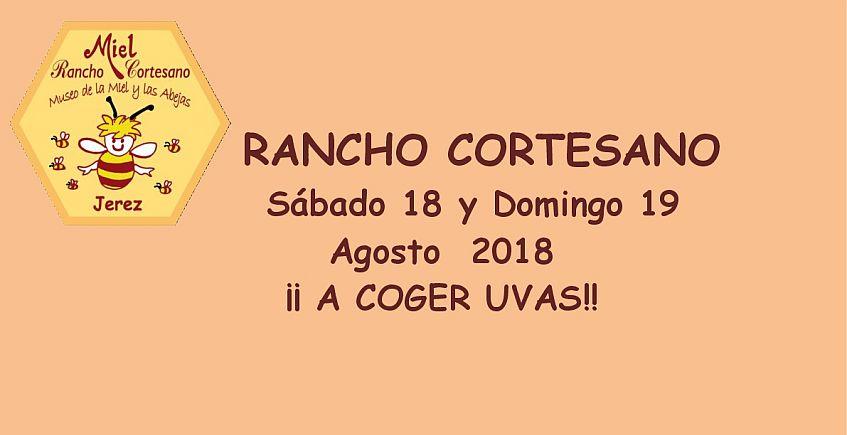 18 y 19 de agosto. Jerez. Visita a las colmenas y taller de recolección de uvas en Rancho Cortesano