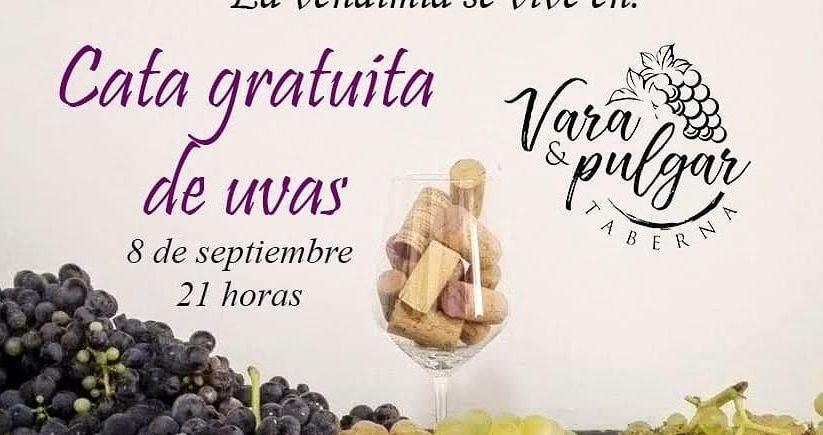 8 de septiembre. Sanlúcar. Cata gratuita Vara y Pulgar.