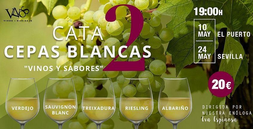 10 de mayo. El Puerto. Segunda cata de cepas blancas de Vinos y Maridaje