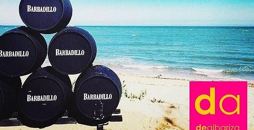 Cata de vinos de Bodegas Barbadillo en Dealbariza