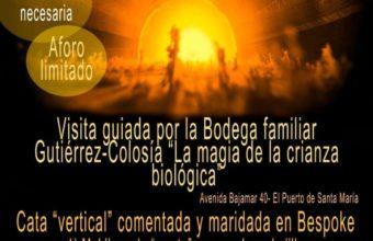 Visita a bodega Gutiérrez-Colosía y cata