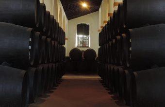 3 de noviembre. Jerez. Visita a Bodegas Fernández-Gao y cata