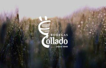 22 de abril. Pueblo Nuevo de Guadiaro. Visita a bodegas y viñedos Díez-Mérito