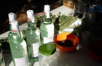 25 de noviembre. San Fernando. Taller de elaboración de licores en el Jardín Botánico