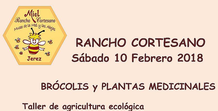 10 y 11 de febrero. Jerez. Taller de brócoli y apicultura en Rancho Cortesano
