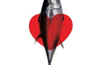 14 de febrero. Barbate. Menú de San Valentín en El Campero