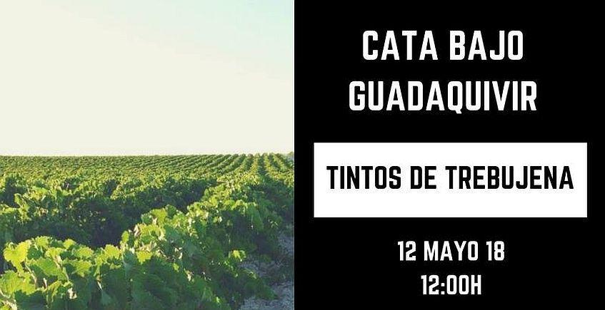 12 de mayo. Trebujena. Cata de tintos Bajo Guadalquivir
