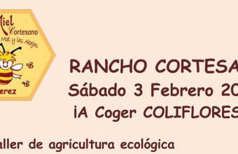 3 y 4 de febrero. Jerez. Agricultura ecológica y apicultura en Rancho Cortesano