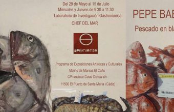29 de mayo al 15 de julio. El Puerto. Exposición de Pepe Baena en Aponiente