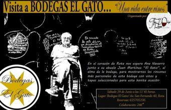 Visita a bodegas El Gato de Rota el 29 de junio