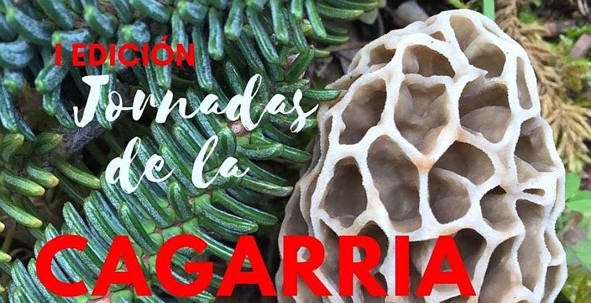 Del 4 al 6 de mayo. Grazalema. Primeras jornadas dedicadas a la seta Cagarria