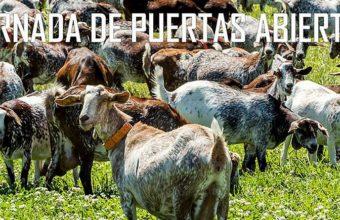 3 de febrero. Rota. Jornada de puertas abiertas en El Bucarito