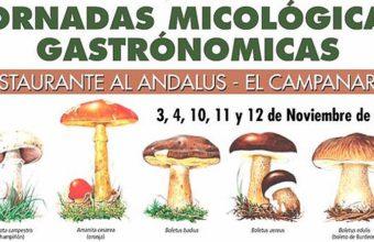 Del 3 al 12 de noviembre. Los Barrios. VIII Jornadas micológicas gastronómicas
