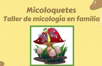 """9 de diciembre. Chiclana. """"Micoloquetes"""", taller de micología en familia"""