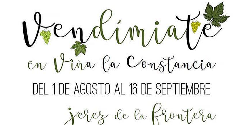 Del 1 de agosto al 16 de septiembre. Jerez. actividades en Viña La Constancia