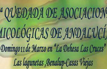 11 de marzo. Benalup. Quedada de asociaciones micológicas de Andalucía