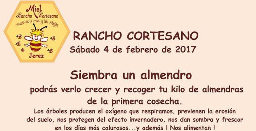28 de febrero. Jerez. La tagarnina, en Rancho Cortesano