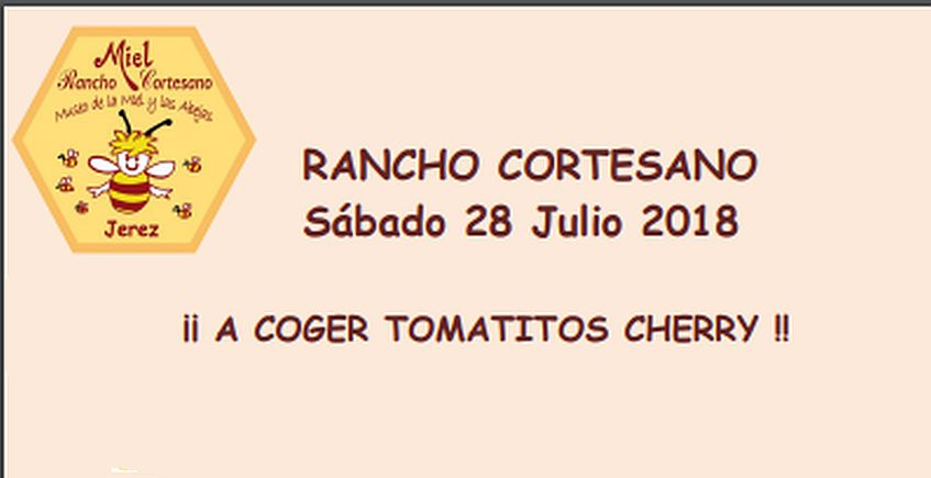 28 de julio. Jerez. Recogida de actividades en Rancho Cortesano