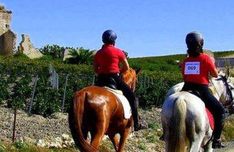 14 de enero. Trebujena. Ruta a caballo y degustación