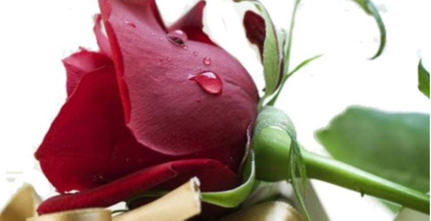 11 al 14 de febrero. Rota. San Valentín en El Embarcadero