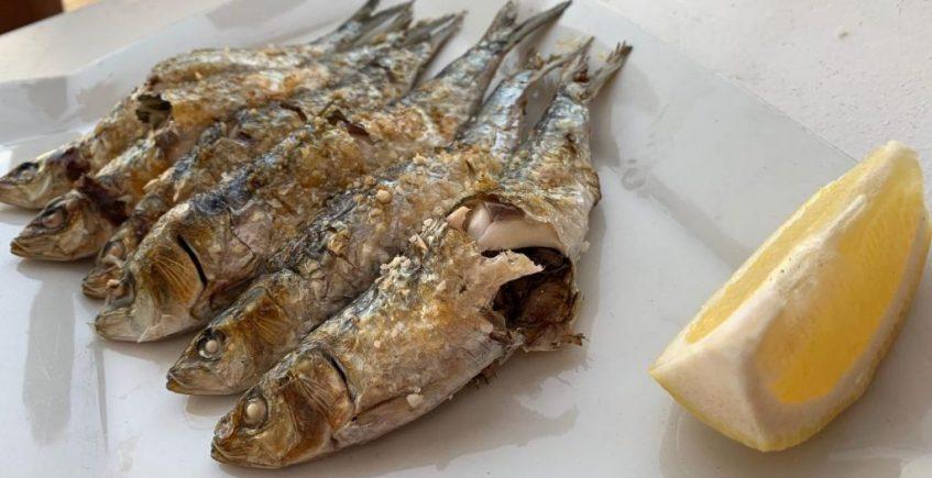 Sardinada popular y degustación gastronómica en Barbate