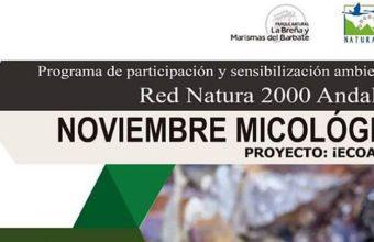 Del 17 al 25 de noviembre. Barbate. Noviembre micológico en La Breña