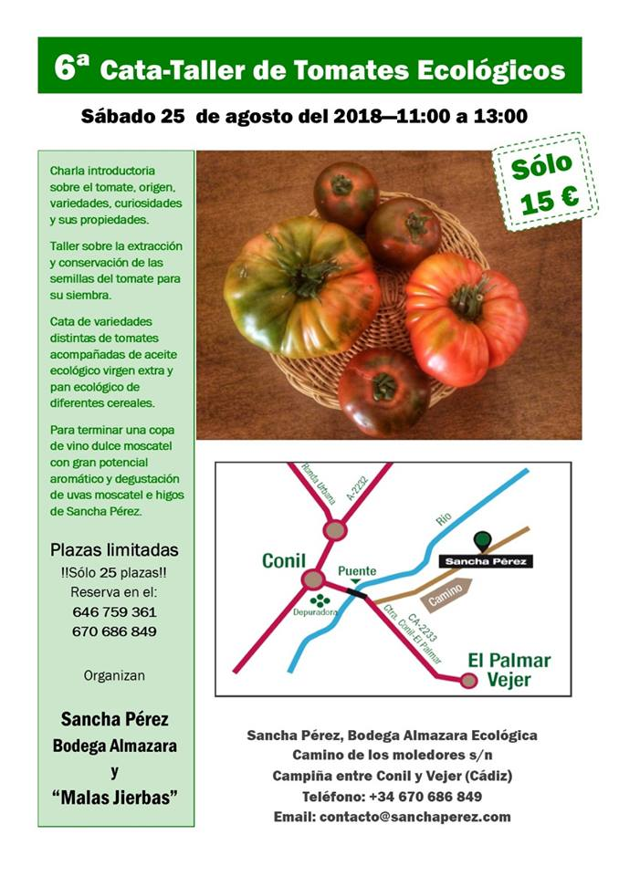 sexta cata de tomates
