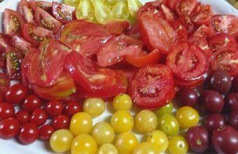 Cata de tomates en Chiclana
