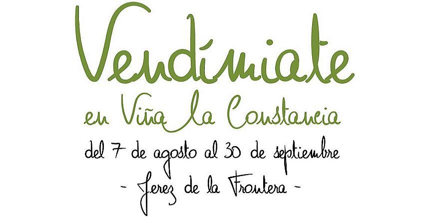 7 de agosto a 30 de septiembre. Jerez. Actividades en torno a la vendimia en Viña La Constancia